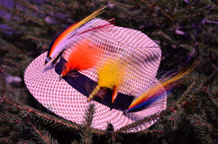 Hat for fishing flyfishing, nature, tree, fir. streamer, leisure, sports Stock Photo