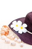 Hat, flower and sea shells as a holiday concept Royalty Free Stock Photography