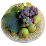 Hat with fruit. Stock Image
