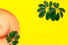 Hat and green leaf tropical flatlay on yellow color background, top view.  stock photo
