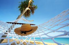 Hat and hammock. View of nice white hammock hanging between two palms stock image