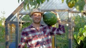 In Hat Holding A för ståendemanbonde mogen vattenmelon på växthusbakgrund lager videofilmer
