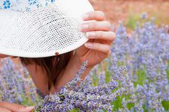 Hat and lavander Stock Photos