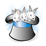 Hat of the magician with three rabbits. Vector illustration Stock Images
