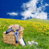 Hat picnic basket dandelion meadow Royalty Free Stock Photo