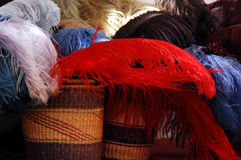 Hat Plumes Royalty Free Stock Images