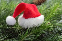 Hat of Santa Claus on Christmas tree branches stock photography