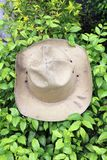 Hat scout put on the green bush, the khaki color of hat. stock photo