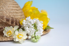 Hat with spring flowers Stock Images