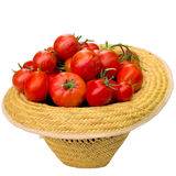 Hat with tomatoes. Stock Images