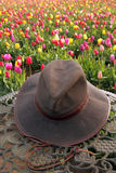 Hat and tulips Stock Photos
