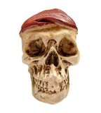 Hat wearing skull. An isolated skull wearing a hat stock images
