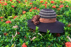 Hat weave hand on leaves green nature background Stock Photos