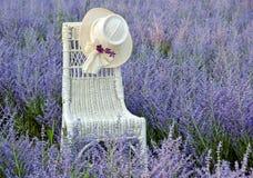 Hat on wicker chair in flower field Royalty Free Stock Photo