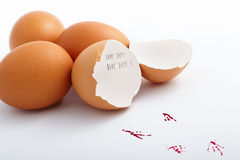 Hatched egg. With mark 21 day in roman number inside the egg shell Royalty Free Stock Images