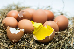 Hatched egg with baby paper chick. On Thatch Royalty Free Stock Image