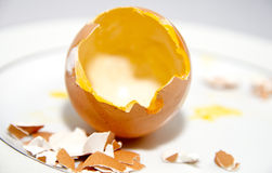 Hatched Egg Royalty Free Stock Photos