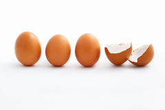 Hatched egg and unhatched ones Royalty Free Stock Image