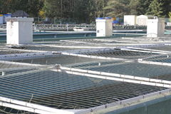 Hatchery Holding Tanks Royalty Free Stock Photo