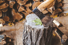 Hatchet sticking in stump in woodsheds Royalty Free Stock Photo