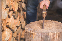 Hatchet thrusted in old stump. Royalty Free Stock Image