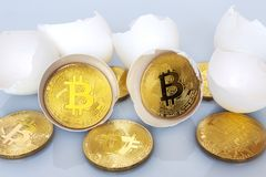 Hatching bitcoin from the egg. The birth of bitcoin. Bitco hatch from eggs Stock Photography