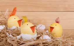Hatching Easter Egg Chicks. Decorated Easter eggs as hatching yellow chicks Stock Image