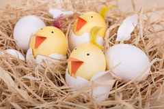 Hatching Easter Egg Chicks. Easter eggs decorated as chicks hatching in a nest Royalty Free Stock Image