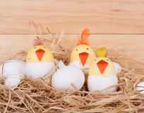 Hatching Easter Egg Chicks. Easter eggs decorated as chicks hatching in a nest on a wood background Stock Image