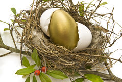 Hatching Golden Egg. A shiny golden egg hatches in a bird's nest Royalty Free Stock Image