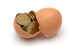 Hatching a Golden Plan Stock Photos