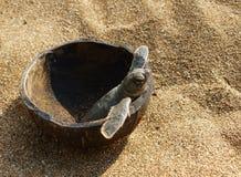 Hatchlings Groene zeeschildpadden op het strand in een kokosnoot stock foto