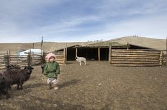 Mongolian nomad kid at their animal closure in a steppe of northern Mongolia. Hatgal, Mongolia, 3rd March 2018: mongolian kid in a steppe of northern Mongolia Stock Photos