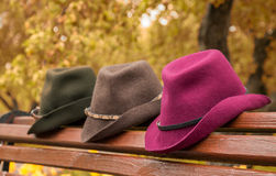 Hats on the bench. Hats lying on the bench in the autumn park Royalty Free Stock Photography