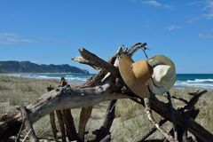 Hats hanging on driftwood Stock Image