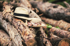 Hats on logs Royalty Free Stock Photos