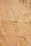Hatshepsut. Or Hatchepsut; meaning Foremost of Noble Ladies was the fifth pharaoh of the eighteenth dynasty of Ancient Egypt. She is regarded by Egyptologists Stock Photography