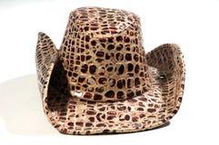 hatt Royaltyfri Foto