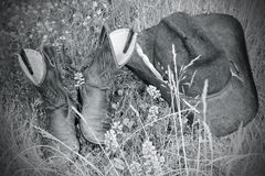 hatt för kängabw-gräs Arkivfoto