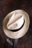 hatt panama royaltyfri bild