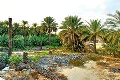 Hatta Oman Photos libres de droits