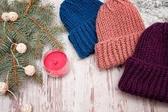 hattar tre Blått, korall och lilor Prydlig filial, girland och c Fotografering för Bildbyråer