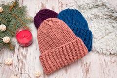 hattar tre Blått, korall och lilor Prydlig filial, girland och c Royaltyfri Bild