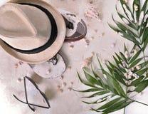 Hatten bläddrar misslyckanden och bladet på sand royaltyfria foton