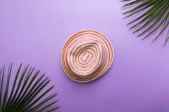 Hatten för sugrörmodesommar som isoleras på den violett eller puprlebackgounden, lägenheten för strandsommarbegrepp, och feriebeg royaltyfri fotografi