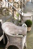 HATTINGEN, ALEMANIA - 15 DE FEBRERO DE 2017: El blanco pintó sillas tejidas del sauce y las plantas verdes adornan un escaparate  Imagen de archivo
