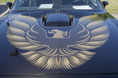Haube 1980 Pontiac- Firebirdtransport-morgens Lizenzfreie Stockbilder