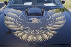 Haube 1980 Pontiac- Firebirdtransport-morgens Lizenzfreie Stockbilder
