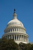 Haube des Kapitol-Gebäudes im Washington DC Stockfoto