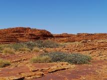 Hauben der australischen Könige Canyon Stockbilder